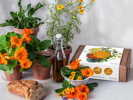 grow-your-gourmet-flower+SQUARE.jpg